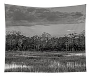 Everglades Panorama Bw Tapestry