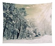 Evergreen Tapestry