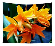 Exotic Orange Tapestry