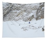 Expert Chutes Tapestry