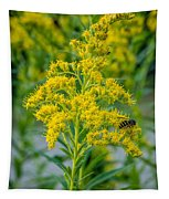 Exploring Goldenrod 3 Tapestry