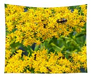 Exploring Goldenrod 5 Tapestry