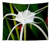 Exquisite Spider Lily Tapestry
