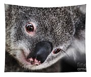 Eye Am Watching You - Koala Tapestry
