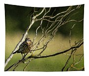 Eye On The Sparrow Tapestry