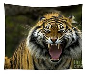 Eyes Of The Tiger Tapestry