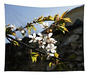 Facades And Fruit Trees - The Church And The Plum Tapestry