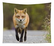 Face To Face Tapestry