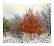 Fall And Winter Tapestry