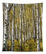 Fall Aspens Tapestry