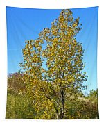 Fall At The Dunes Tapestry