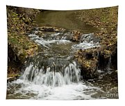 Fall At The Lower Falls Tapestry