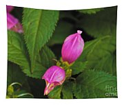 Fall Buds Tapestry