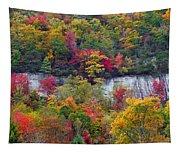 Fall Colors Along Tanasee Road Tapestry