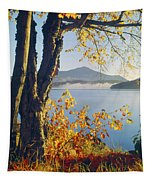 Fall Colors Frame Whiteface Mountain Tapestry