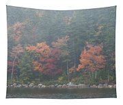 Fall Colors In Acadia National Park Maine Img 6483 Tapestry