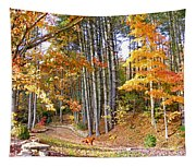 Fall Driveway And Coco The Dog Tapestry