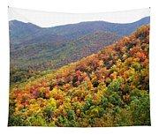 Fall Folage 2 Along The Blueridge Tapestry