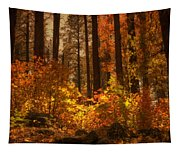 Fall Forest  Tapestry