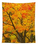 Fall In Pennsylvania Tapestry