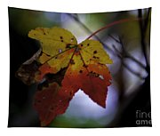 Red And Yellow Maple Leaf Tapestry