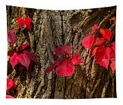 Fall Leaves Against Tree Trunk Tapestry