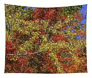 Fall Leaves In So Cal Tapestry