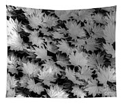 Fall Leaves Tapestry