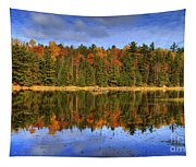 Fall.. Tapestry