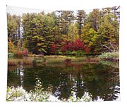 Fall Reflection And Colors Tapestry