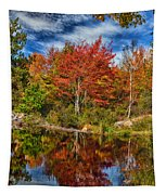 Fall Reflections In Maine Img 6312 Tapestry