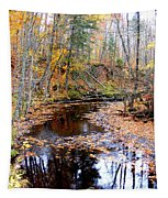 Fall River Tapestry