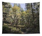 Fall Splender Tapestry