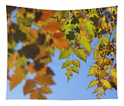 Fall Time Tapestry