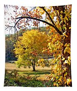 Fall Trees 4 Of Wnc Tapestry