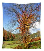 Fall Trees 5 Of Wnc Tapestry