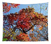 Fall Trees Of Wnc Tapestry