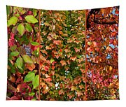 Fall Trio Collage Tapestry