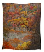 Fall Tunnel Tapestry