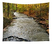 Fall Waters Tapestry
