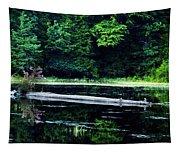 Fallen Log In A Lake Tapestry