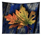 Falling For Colour Tapestry