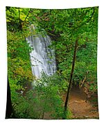 Falling Foss Waterfall In North York Moors National Park Tapestry