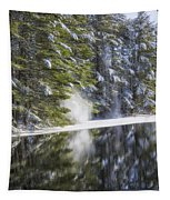 Falling Snow Tapestry