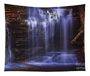 Falls And Log Tapestry