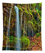 Falls And Moss Tapestry