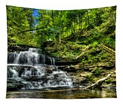 Falls And Steps Tapestry