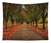 Fall's Driveway Tapestry