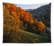 Fall's Mountainside Cascade Tapestry