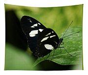 False Zebra Longwing Butterfly Tapestry